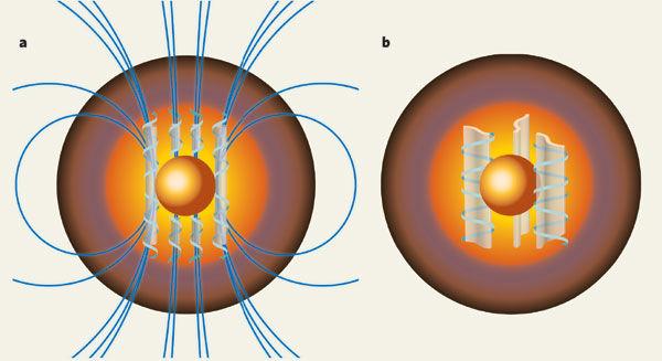 Basic Equations of Ideal One-Fluid Magnetohydrodynamics (Part III &IV)